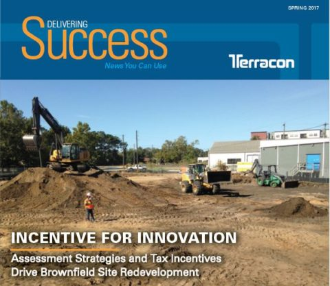 Spring 2017 Delivering Success Cover